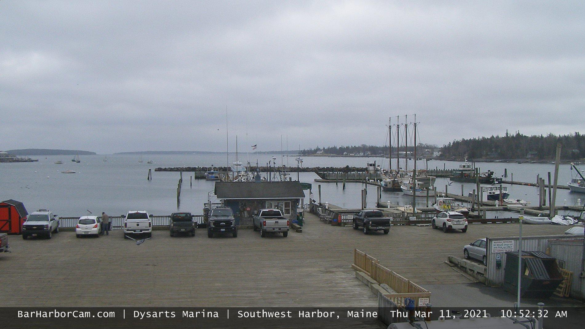 Bar Harbor Webcam